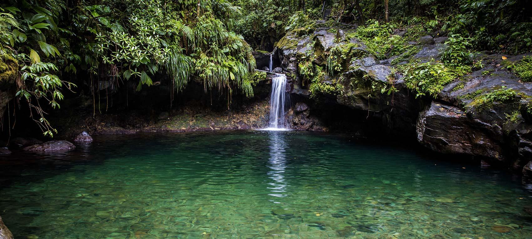 Le bassin Paradise