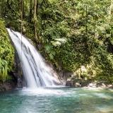 Tous droits réservés. Reproduction interdite sans autorisation © Pays Guadeloupe
